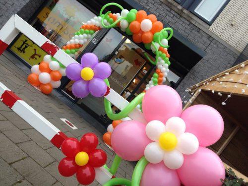 Ballonnenboog flower